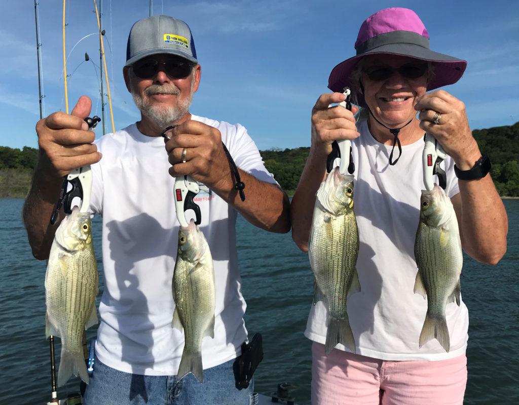 Lake Belton Texas white bass caught via downrigging